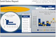 SAP Crystal Reports Dashboard Design 2008