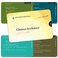 Choices Architect® Sort Card Deck, 2nd Edition - Russian